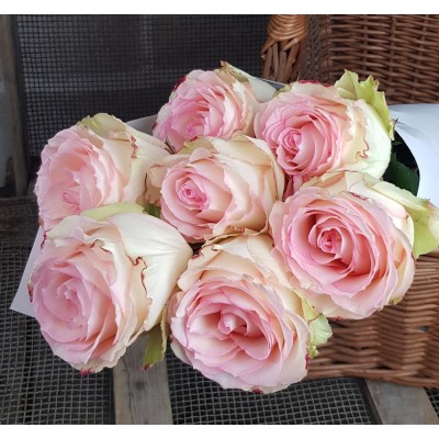 """ROSES """"ESPERANCE"""""""